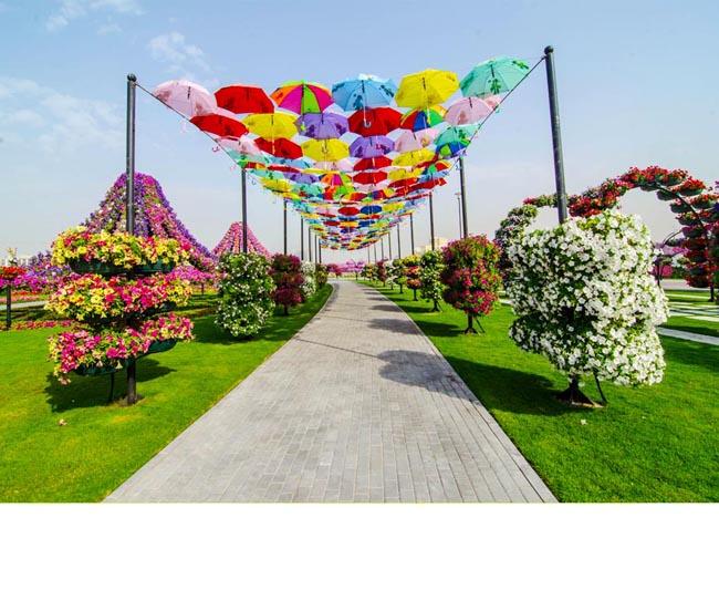 In Dubai S A Deschis Cea Mai Mare Gradina Cu Flori