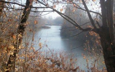 Locul din Romania unde apa alcalina carbogazoasa este francofona. Are acelasi proprietati ca celebra Vichy-Celentines